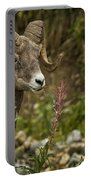 Ram Eating Fireweed Portable Battery Charger