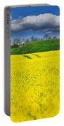 Rape Field Portable Battery Charger