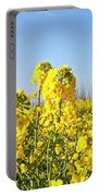 Rape Field With Photographer Portable Battery Charger
