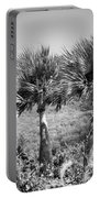 Rare Palm Trees Curacao Portable Battery Charger