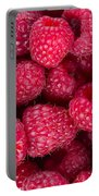 Raspberry  Portable Battery Charger