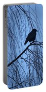 Raven  Portable Battery Charger