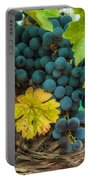 Ready For Harvest Portable Battery Charger