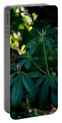 Ready To Bloom Portable Battery Charger