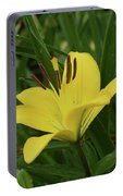 Really Beautiful Yellow Lily Growing In Nature Portable Battery Charger