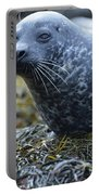 Really Cute Harbor Seal On Seaweed Portable Battery Charger