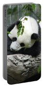 Really Cute Panda Bear Sleeping On A Log Portable Battery Charger