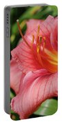 Really Pretty Blooming Pink Daylily In A Garden Portable Battery Charger