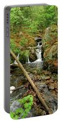 Reany Falls 2 Portable Battery Charger