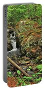 Reany Falls 3 Portable Battery Charger