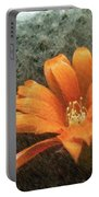 Rebutia Muscula Bright Orange Flower Portable Battery Charger by Heiko Koehrer-Wagner