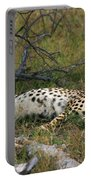 Reclining Cheetah 2 Portable Battery Charger