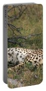 Reclining Cheetah Watching Portable Battery Charger