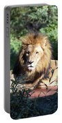 Reclining King Portable Battery Charger