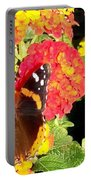 Red Admiral Butterfly Portable Battery Charger