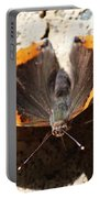 Red Admiral Close Portable Battery Charger