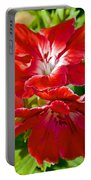 Red Amaryllis At Pilgrim Place In Claremont-california Portable Battery Charger