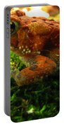 Red American Toad Portable Battery Charger