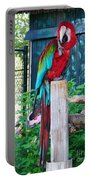 Red  And  Green Macaw         Zoo      Indiana Portable Battery Charger