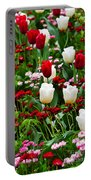 Red And White Tulips With Red And Pink English Daisies In Spring Portable Battery Charger