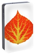 Red And Yellow Aspen Leaf 10 Portable Battery Charger
