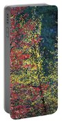 Red And Yellow Leaves Abstract Horizontal Number 1 Portable Battery Charger