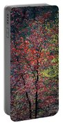 Red And Yellow Leaves Abstract Vertical Number 1 Portable Battery Charger