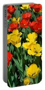 Red And Yellow Tulips  Naperville Illinois Portable Battery Charger