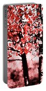 Red Aspen II Portable Battery Charger