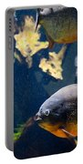 Red Bellied Piranha Fishes Portable Battery Charger