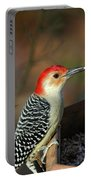 Red-bellied Woodpecker Portable Battery Charger