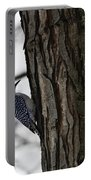 Red Bellied Woodpecker No 1 Portable Battery Charger