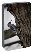 Red Bellied Woodpecker No 2 Portable Battery Charger