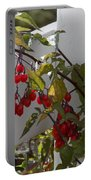 Red Berries On A White Fence Portable Battery Charger