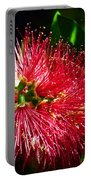 Red Bottle Brush Portable Battery Charger