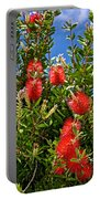 Red Bottlebrush At Pilgrim Place In Claremont-california Portable Battery Charger