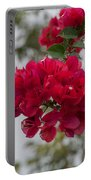 red bougainvillea in Laguna Guerrero Portable Battery Charger