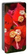 Red Bougainvillea  Portable Battery Charger