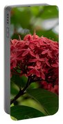 Red Bouquet 9 Portable Battery Charger