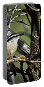 Red-breasted Nuthatch Portable Battery Charger