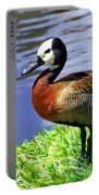 Red Breasted Wood Duck Portable Battery Charger