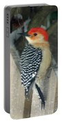 Red Breasted Woodpecker On Fence Portable Battery Charger