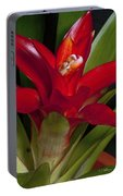 Red Bromiliad Portable Battery Charger