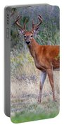 Red Bucks 1 Portable Battery Charger by Antonio Romero