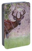 Red Bucks 2 Portable Battery Charger