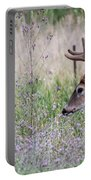 Red Bucks 4 Portable Battery Charger by Antonio Romero