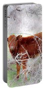 Red Calf In Winter Brush Portable Battery Charger