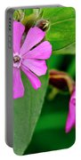 Red Campion - Fairy Flower. Portable Battery Charger