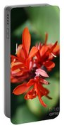 Red Canna Flower Portable Battery Charger