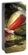 Red Cardinal Bathing Portable Battery Charger